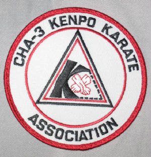 cha3kenpokarateassociation.jpg